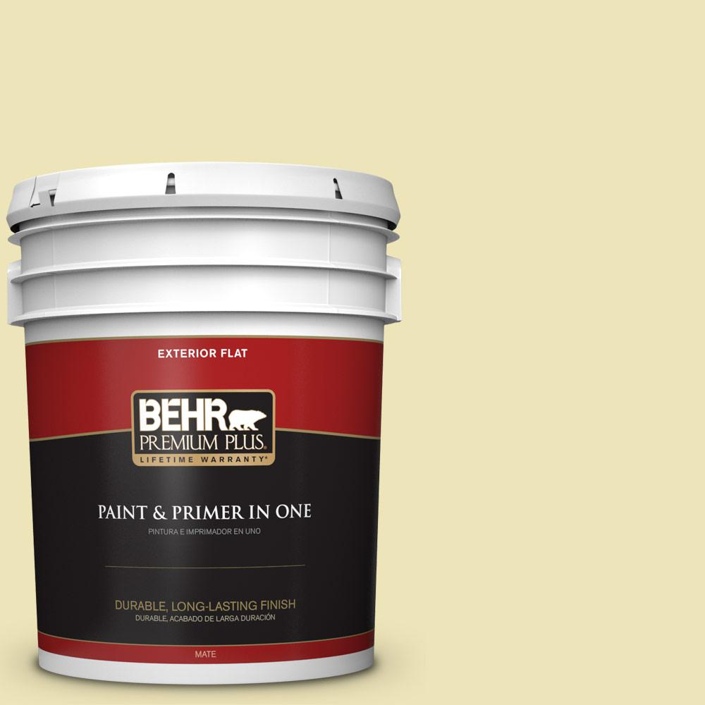 5 gal. #PPU9-13 Yellow Wax Pepper Flat Exterior Paint