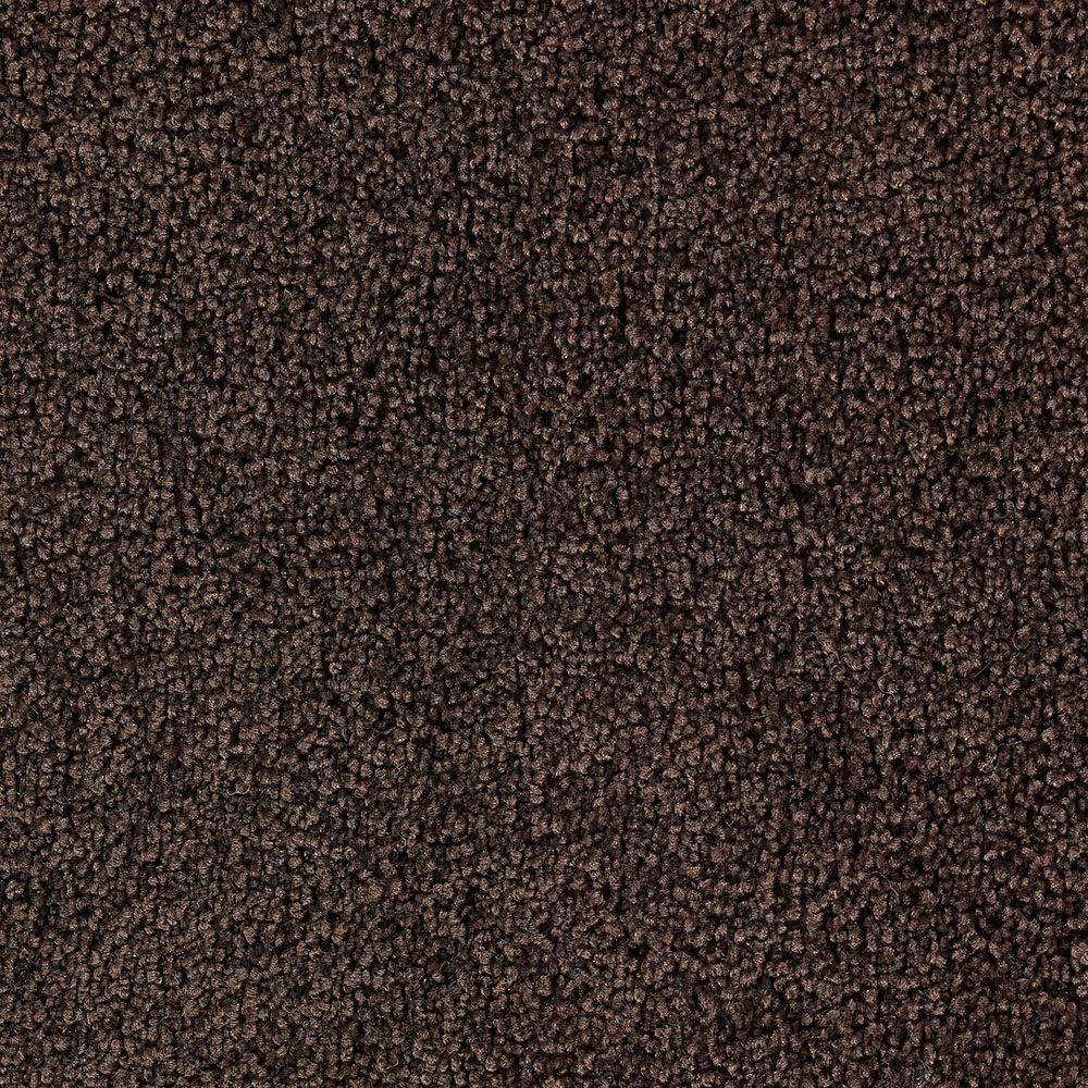 Martha Stewart Living Weston Park Bay Colt - 6 in. x 9 in. Take Home Carpet Sample-DISCONTINUED