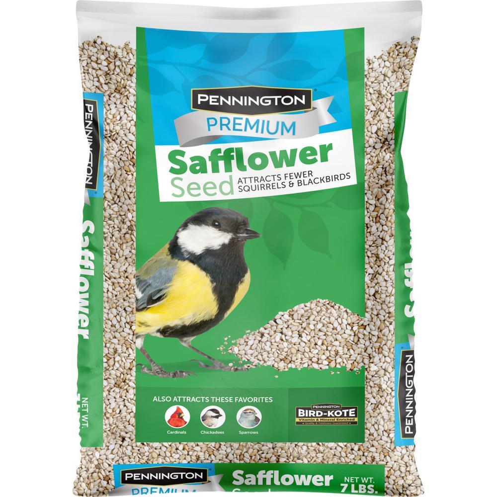 Premium 7 lbs. Safflower Bird Seed Bird Food