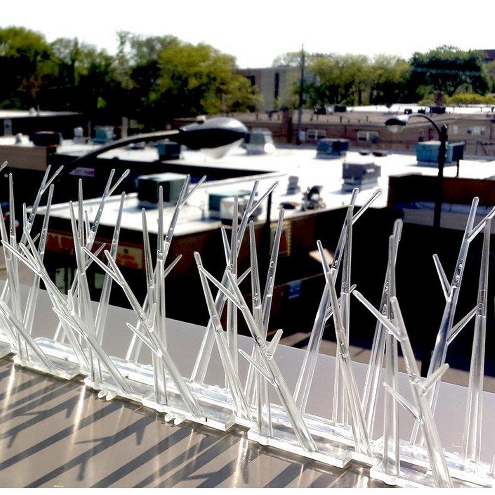 50 ft. Plastic Bird Spikes