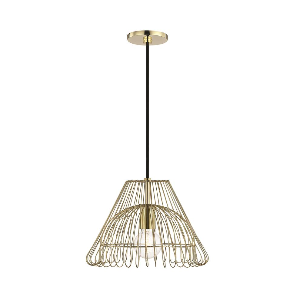Mitzi By Hudson Valley Lighting Katie 1 Light Polished Br Small Pendant