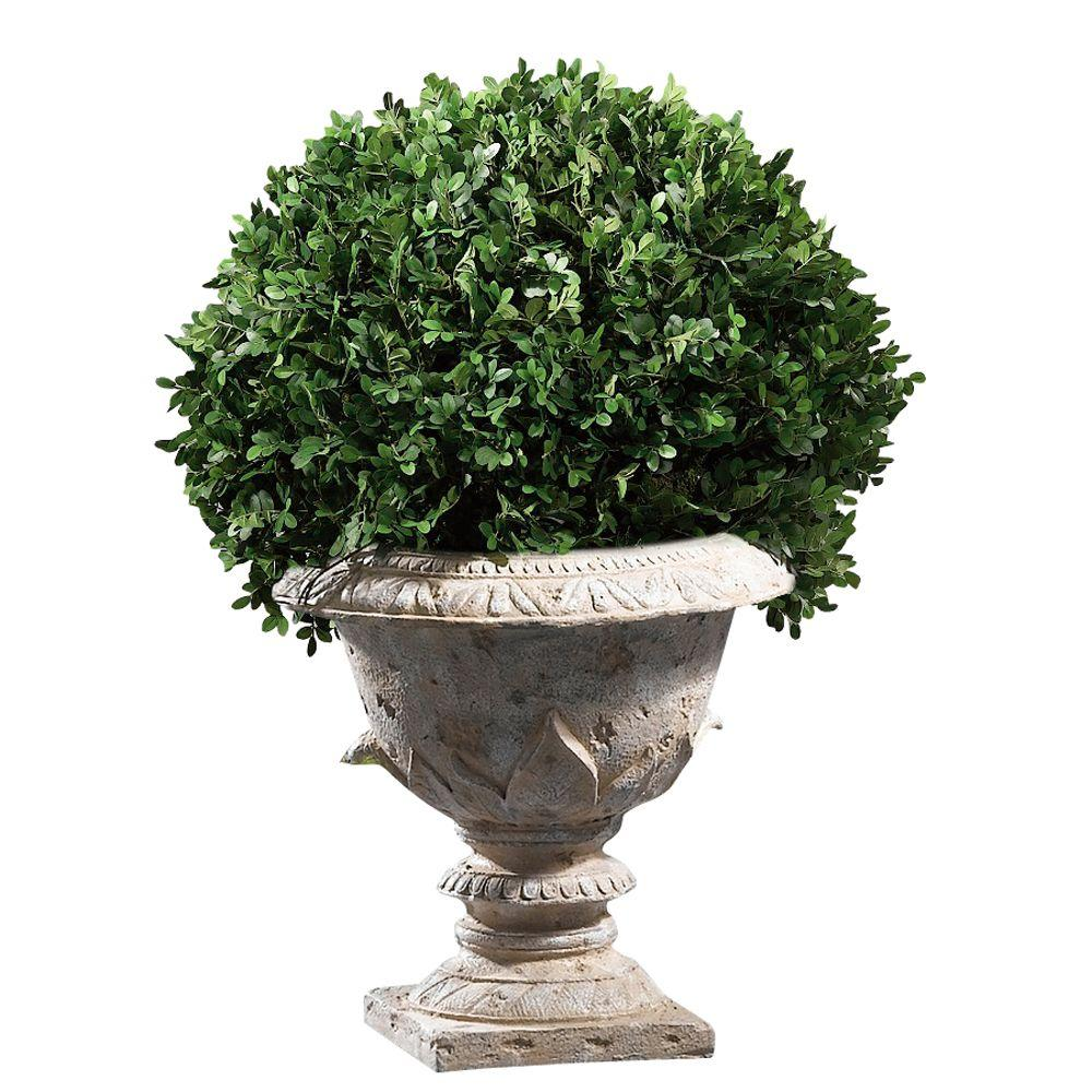 Home Decorators Collection 20 in. H Boxwood Foliage Topiary with Resin Urn Base