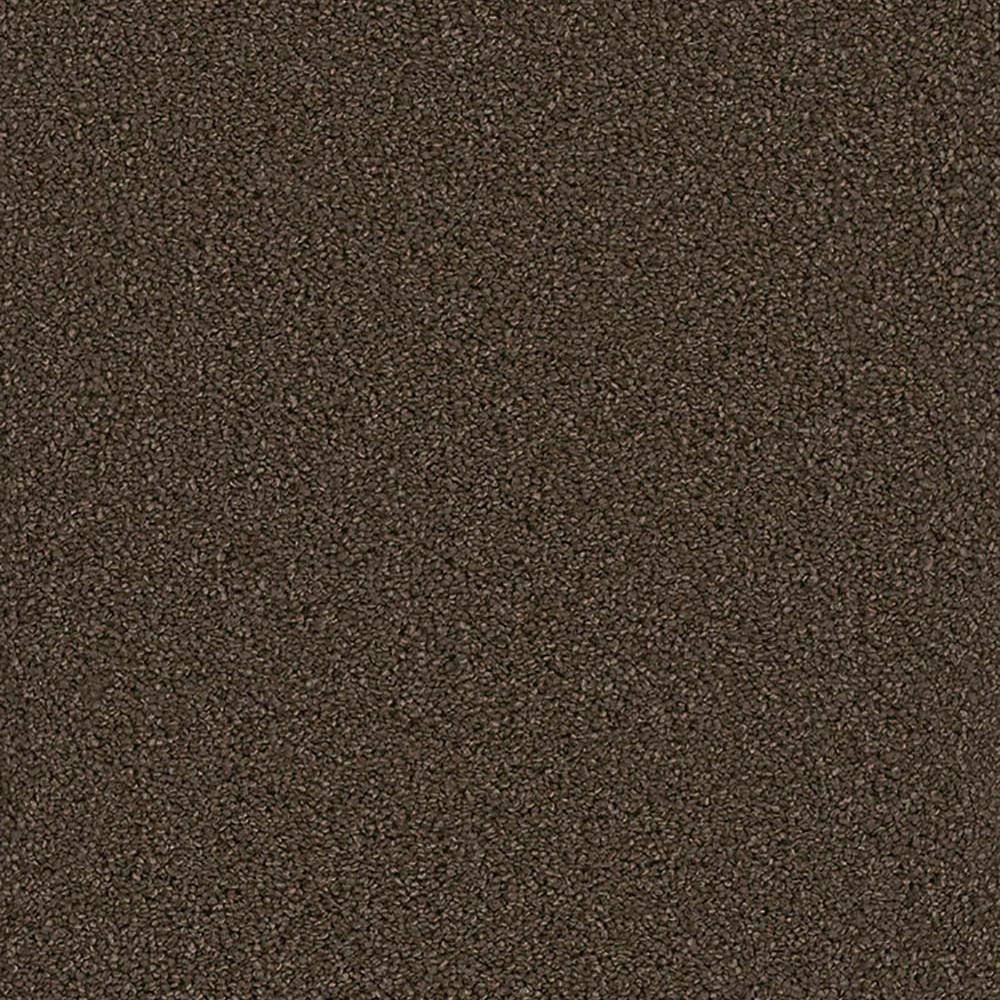Harvest I - Color Ander Texture 12 ft. Carpet