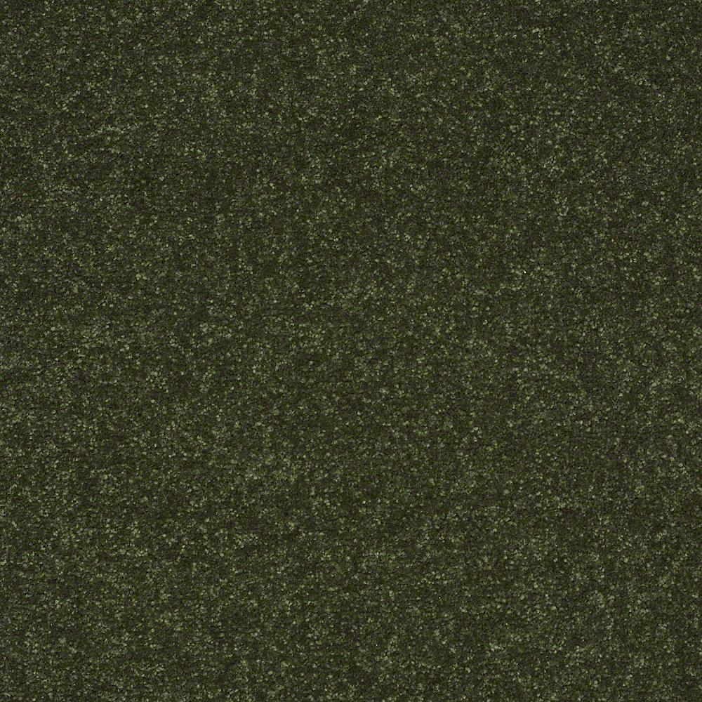 Home Decorators Collection Full Bloom I - Color Fairway Texture 12 ft. Carpet