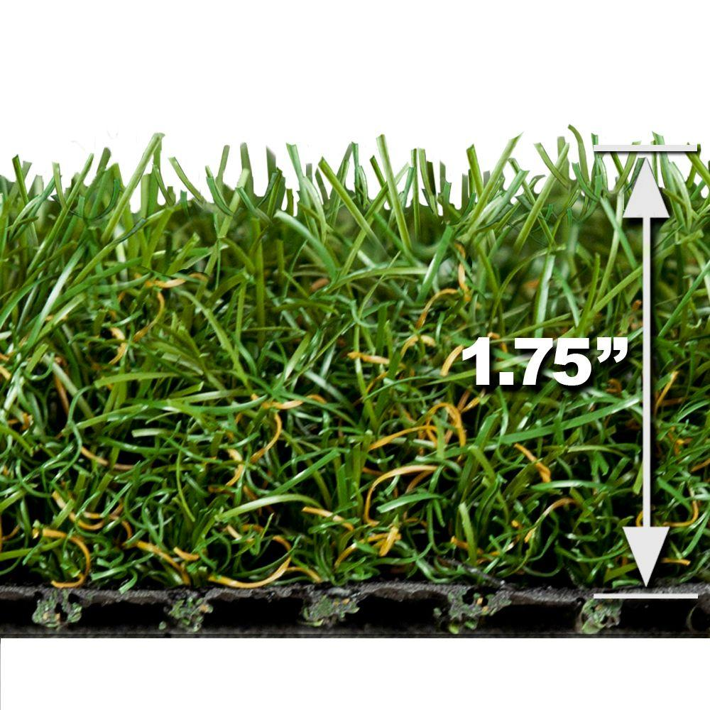 Turf Evolutions Luxurious Indoor Outdoor Landscape Artificial Synthetic Lawn Turf Grass Carpet,5 ft. x 10 ft.