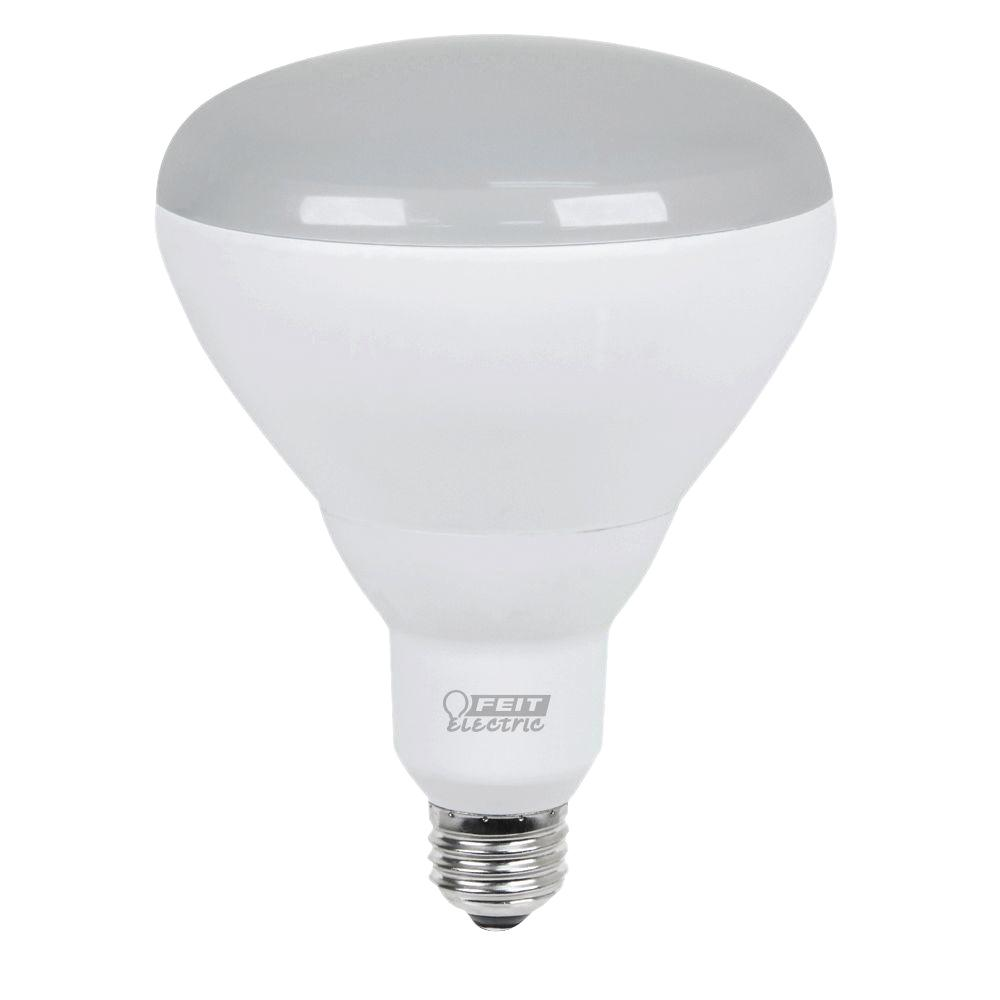 BR40 - LED Light Bulbs - Light Bulbs - The Home Depot