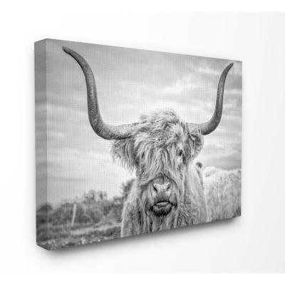 """30 in. x 40 in. """"Black and White Highland Cow Photograph"""" by Joe Reynolds Printed Canvas Wall Art"""