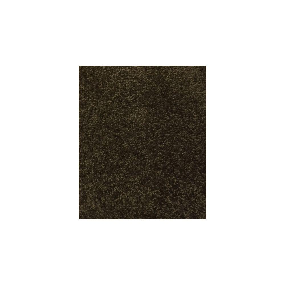 Petproof carpet sample maisie i color oriental for Pet resistant carpet