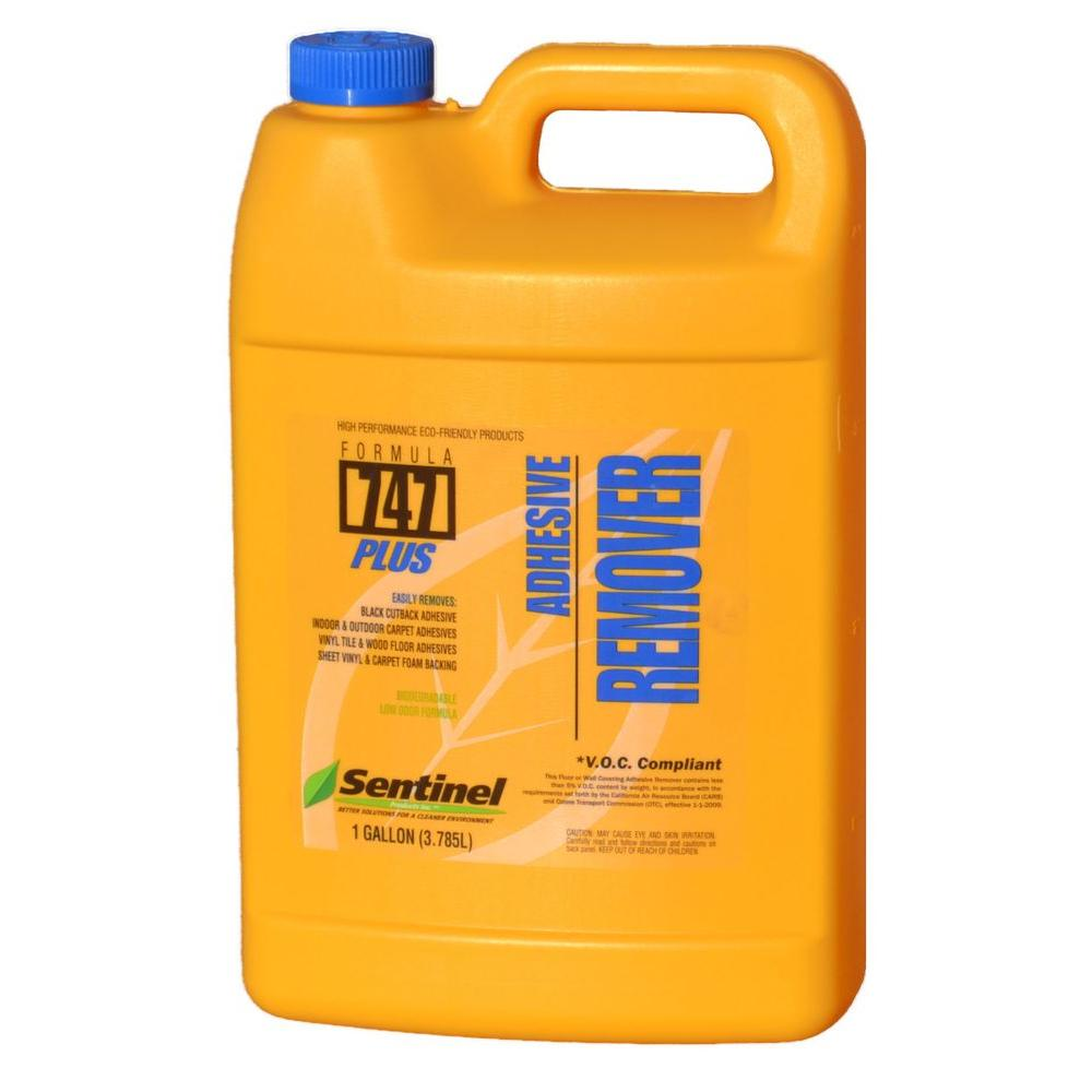 Paint Remover  Gallon