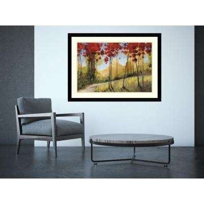 "45 in. W x 33 in. H ""Forest Trail"" by Thomas Andrew Framed Art Print"