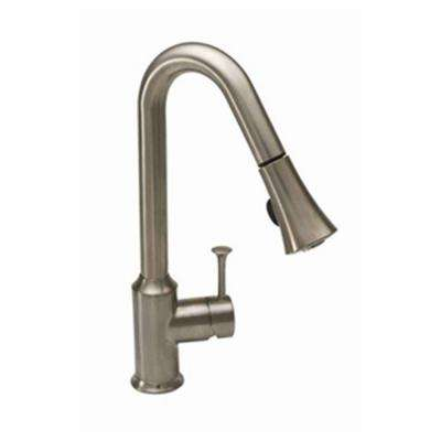 Pekoe Single-Handle Pull-Down Sprayer Kitchen Faucet with High-Arc in Stainless Steel