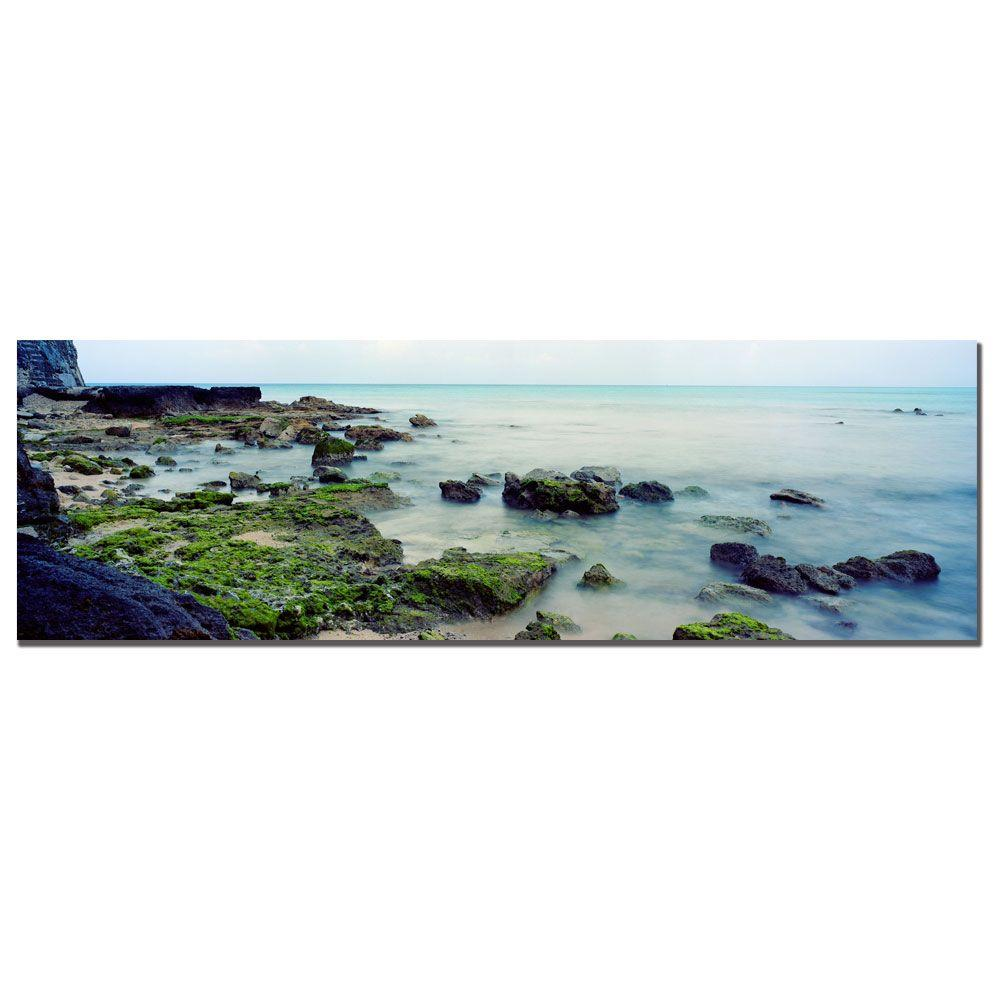 10 in. x 32 in. Bermuda Coast Canvas Art