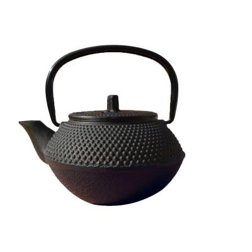 Tokyo Teapot in Matte Black