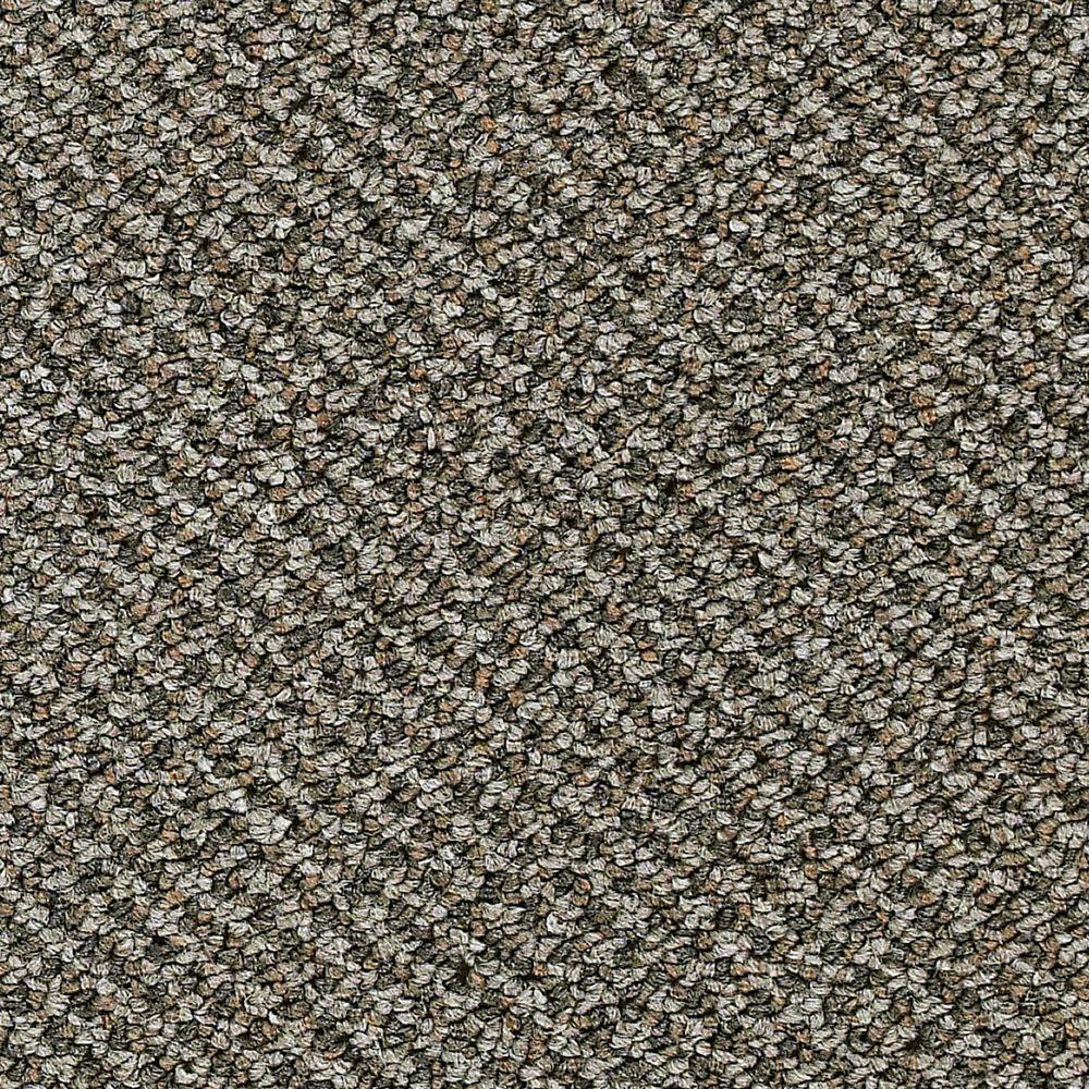 Trafficmaster Carpet Sample Desert Color Oasis Loop 8