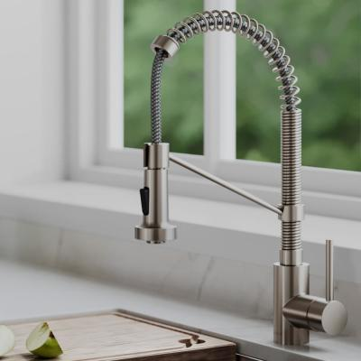 Bolden Single Handle Pull Down Sprayer Kitchen Faucet with Deck Plate in Spot Free Stainless Steel