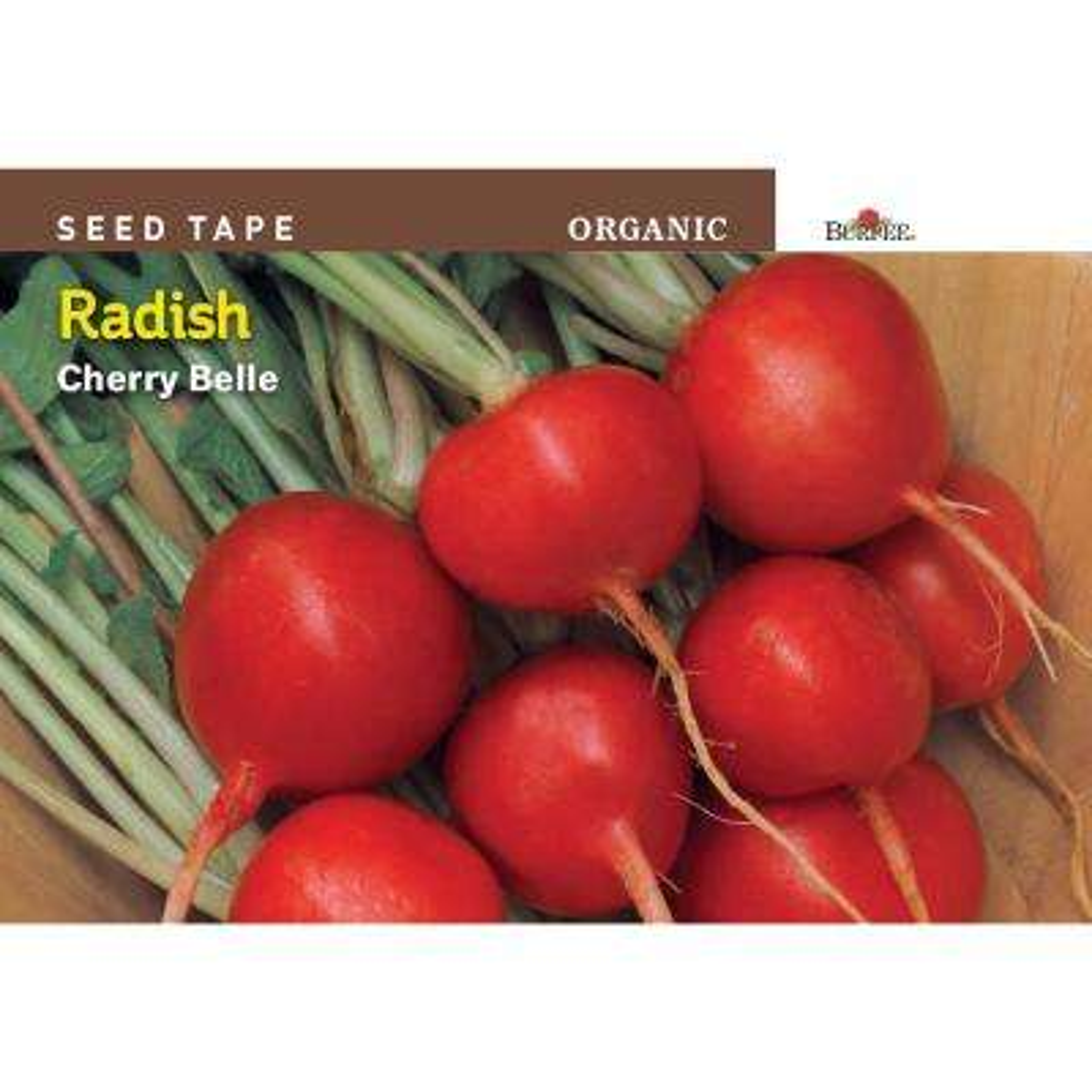 Seed Tape Organic Radish Cherry Belle Seed