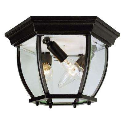 Stewart 4-Light Outdoor Black Incandescent Ceiling Light