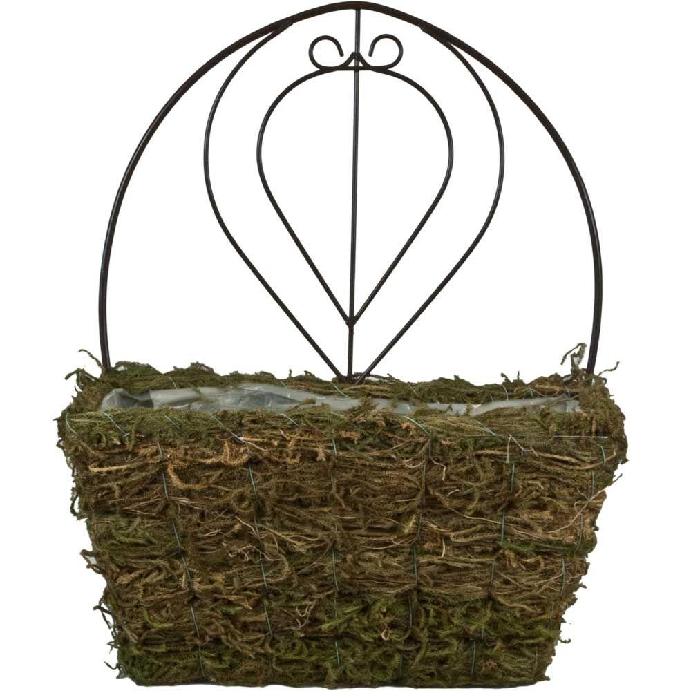 15 in. Fern Moss Coconut Fiber Wall Planter