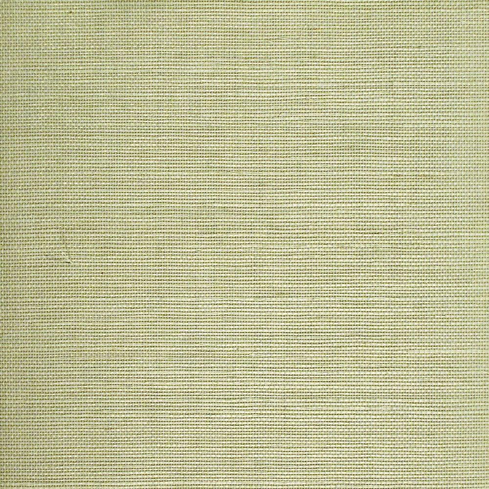 The Wallpaper Company 8 in. x 10 in. Green Grasscloth Wallpaper Sample-DISCONTINUED