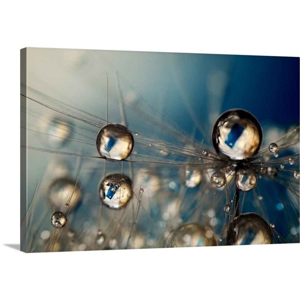 DANDELION SEEDS WATER DROPS MODERN CANVAS WALL ART PICTURE PRINT READY TO HANG