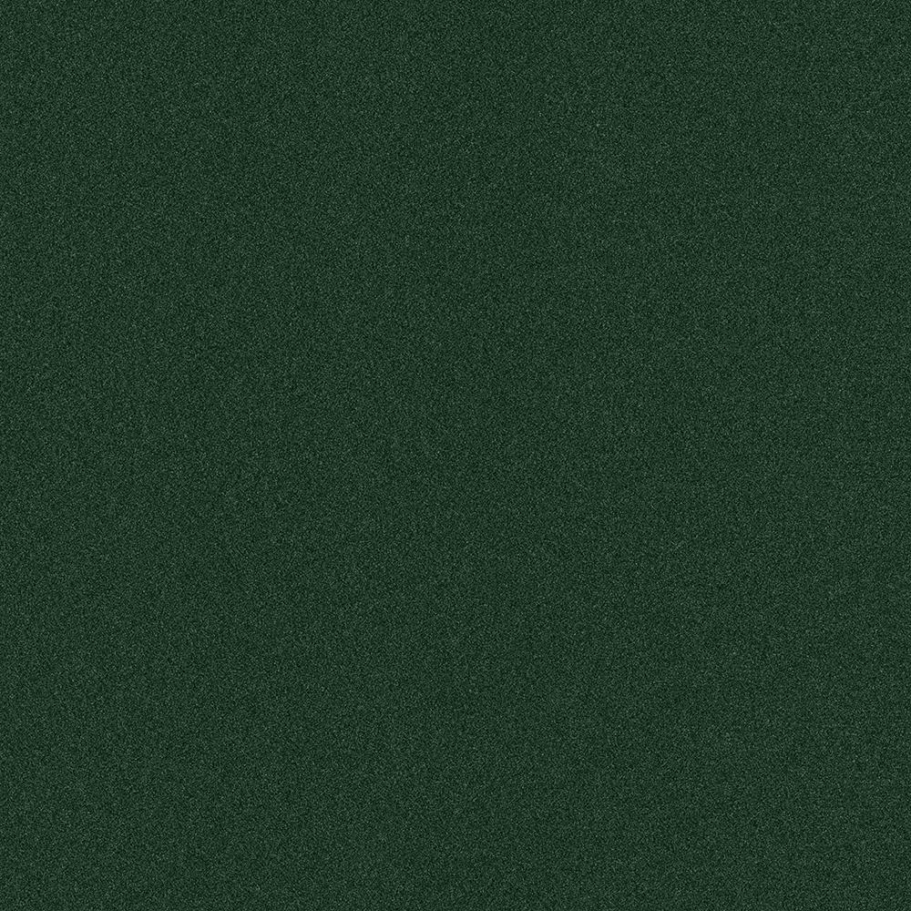 Arcadian - Color Heather Green Texture Indoor/Outdoor 12 ft. Carpet