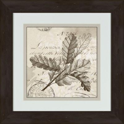 """17 in. x 17 in. """"Sophisticated Botany D"""" Framed Wall Art"""