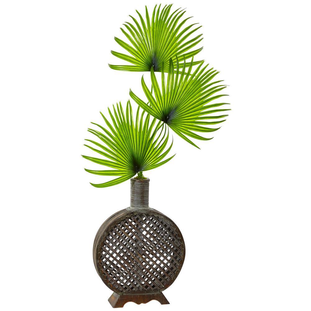 Indoor Fan Palm in Open Weave Vase