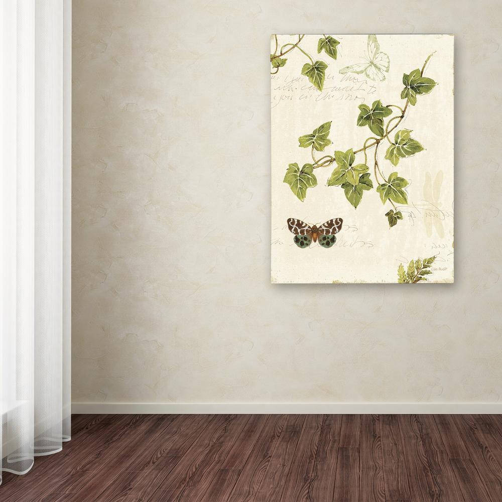"Trademark Fine Art 47 in. x 35 in. ""Ivies and Ferns II"""