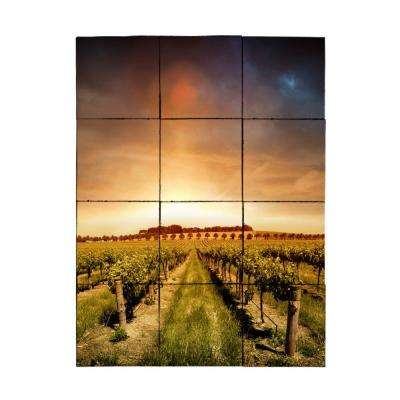 Vineyard2 24 in. x 18 in. Tumbled Marble Tiles (3 sq. ft. /case)