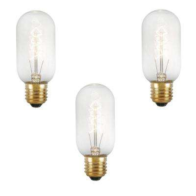 40-Watt Incandescent T14 Light Bulb (3-Pack)