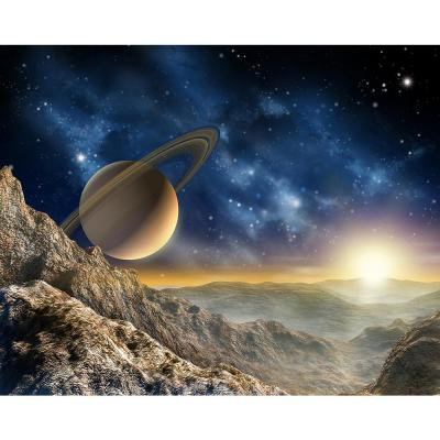 118 in. x 98 in. Galaxy Wall Mural