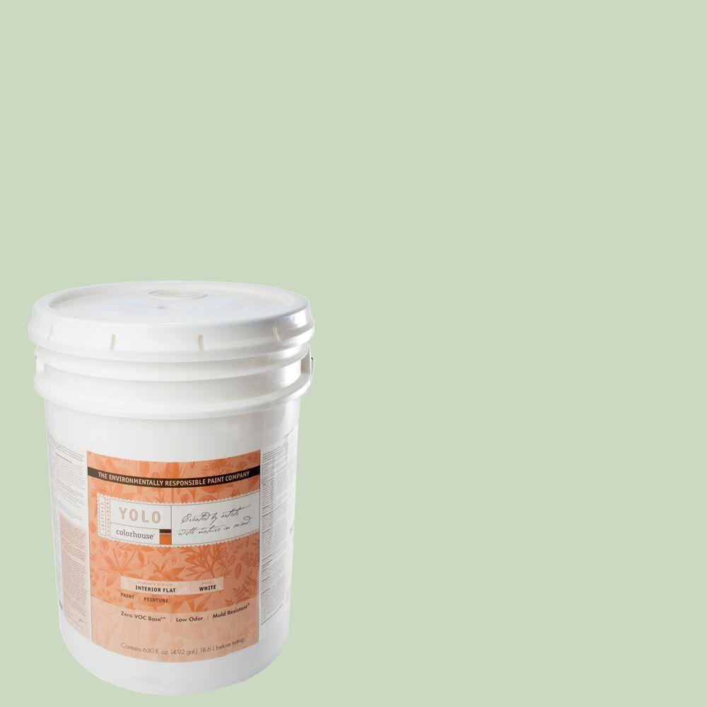 YOLO Colorhouse 5-gal. Leaf .06 Flat Interior Paint-DISCONTINUED