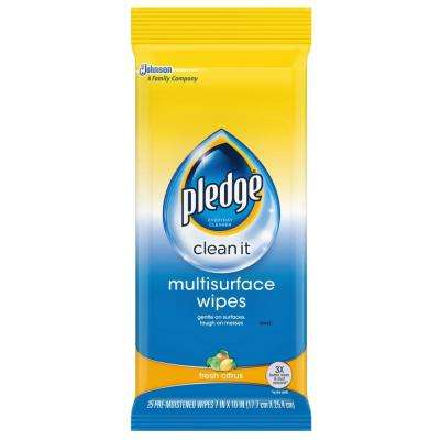 Multi-Surface Wipes (25-Pack)