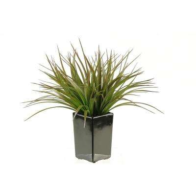 Indoor Brown and Green Grass in Square Black Ceramic Planter