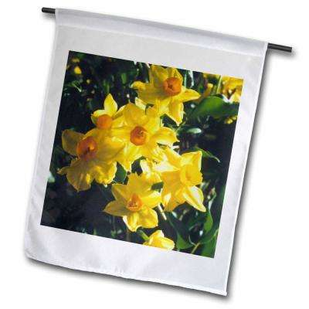 Flowers 1 ft. x 1-1/2 ft. Daffodils Flag
