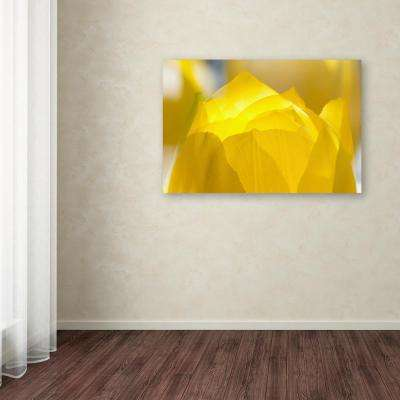 """30 in. x 47 in. """"Yellow Tulip Double Exposure"""" by Kurt Shaffer Printed Canvas Wall Art"""