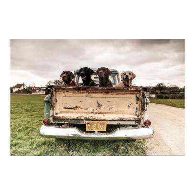 "47 in. x 32 in. ""Old Friends"" Tempered Glass Wall Art"