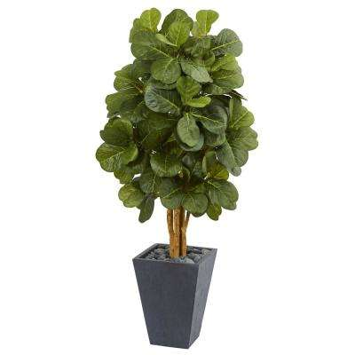 5.5 ft. High Indoor Fiddle Leaf Artificial Tree in Slate Planter
