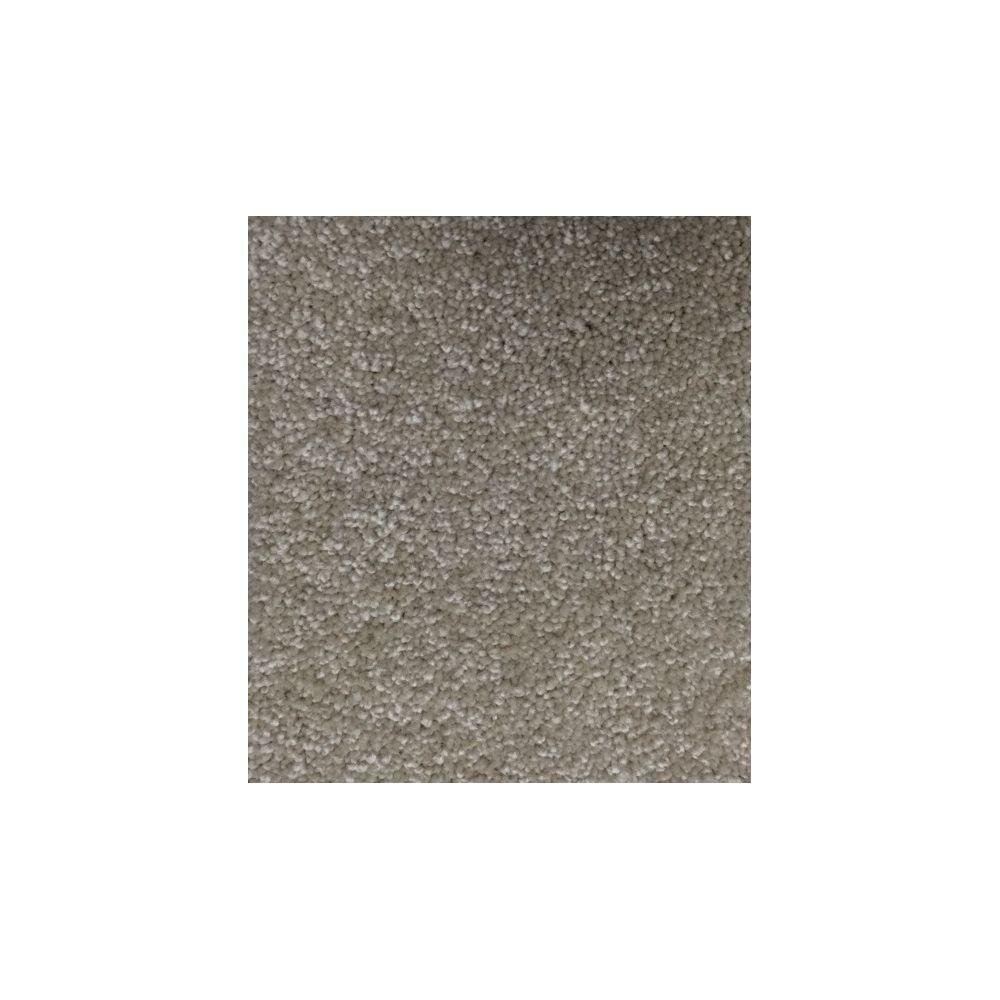 Carpet Sample - Life's Comfort II - Color Oakmoss Texture 8 in. x 8 in.