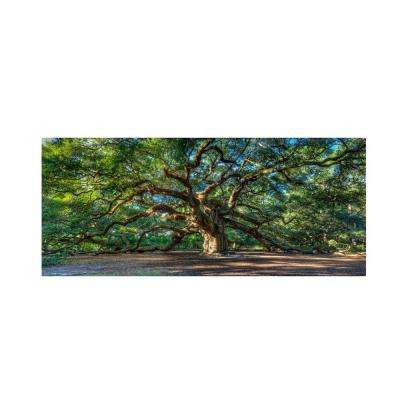 12 in. x 24 in. Angel Oak Charleston Canvas Art