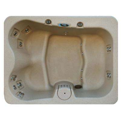 4-Person 19-Jet Plug and Play Laguna Spas Hot Tub with Hard Top Cover