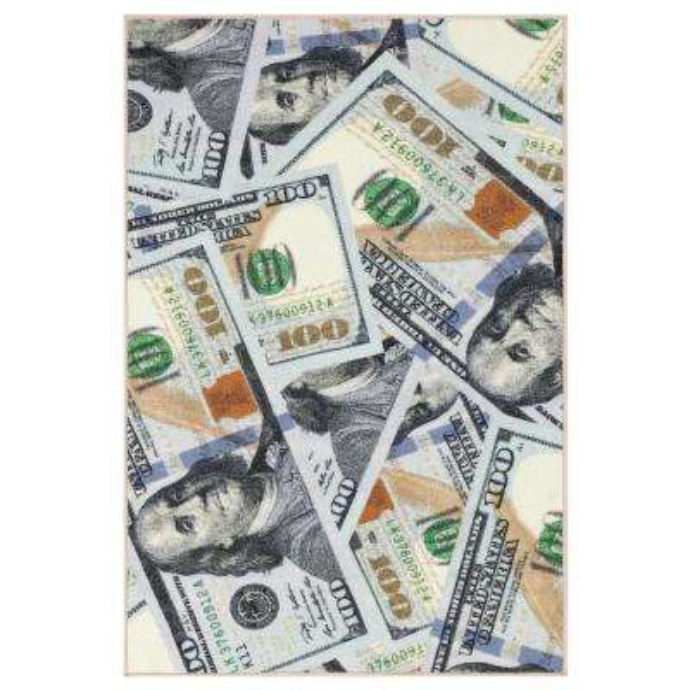 Siesta Collection 100 Dollar Bill Design Multi 3 ft. 3 in. x 5 ft. Area Rug
