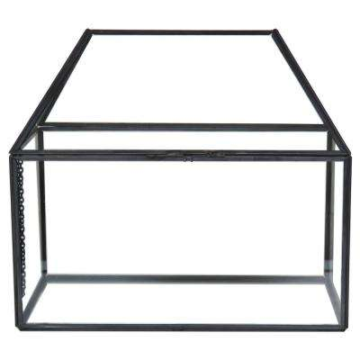 8.5 in. Metal and Glass Terrarium
