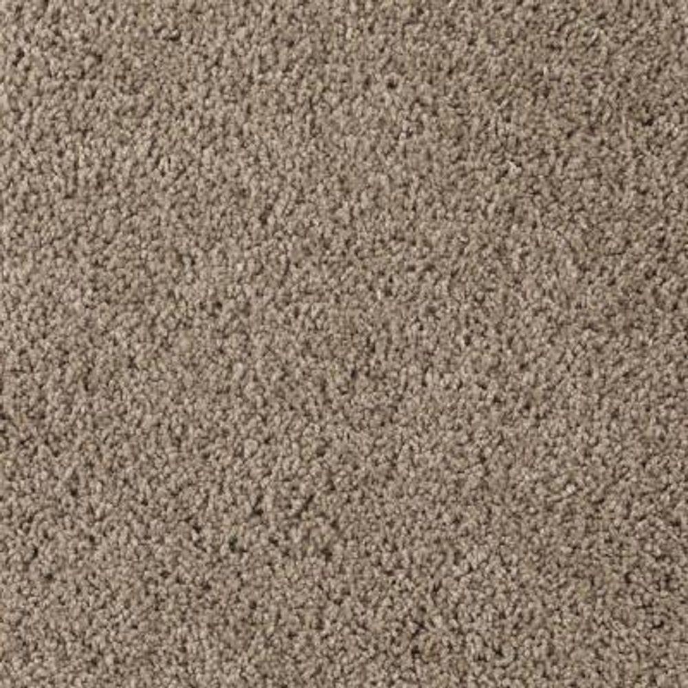Carpet Sample - Cheyne I - Color Hearthstone Twist 8 in. x 8 in.