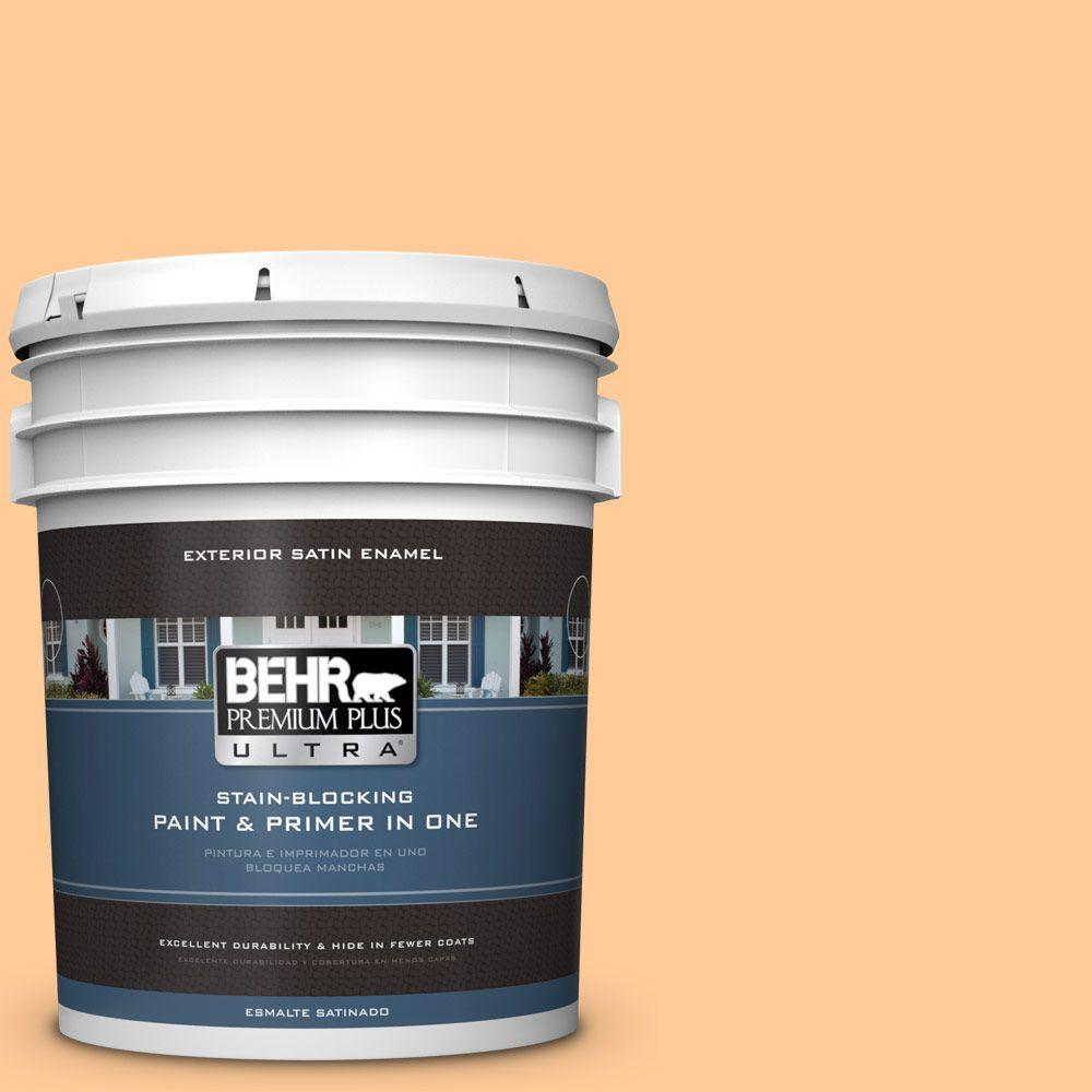 5-gal. #280B-4 Apricot Light Satin Enamel Exterior Paint