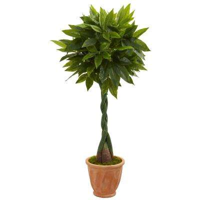 Real Touch 5 ft. High Indoor Money Artificial Tree in Terracotta Planter