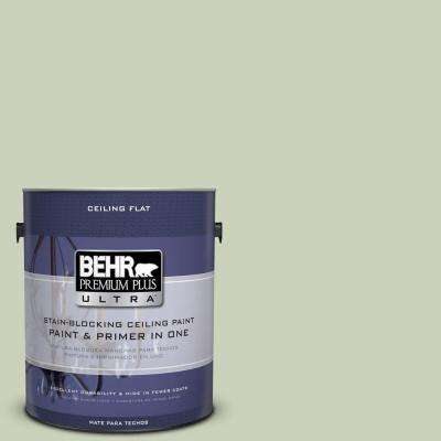 1 gal. No.UL210-12 Ceiling Tinted to Chinese Jade Flat Interior Paint and Primer in One