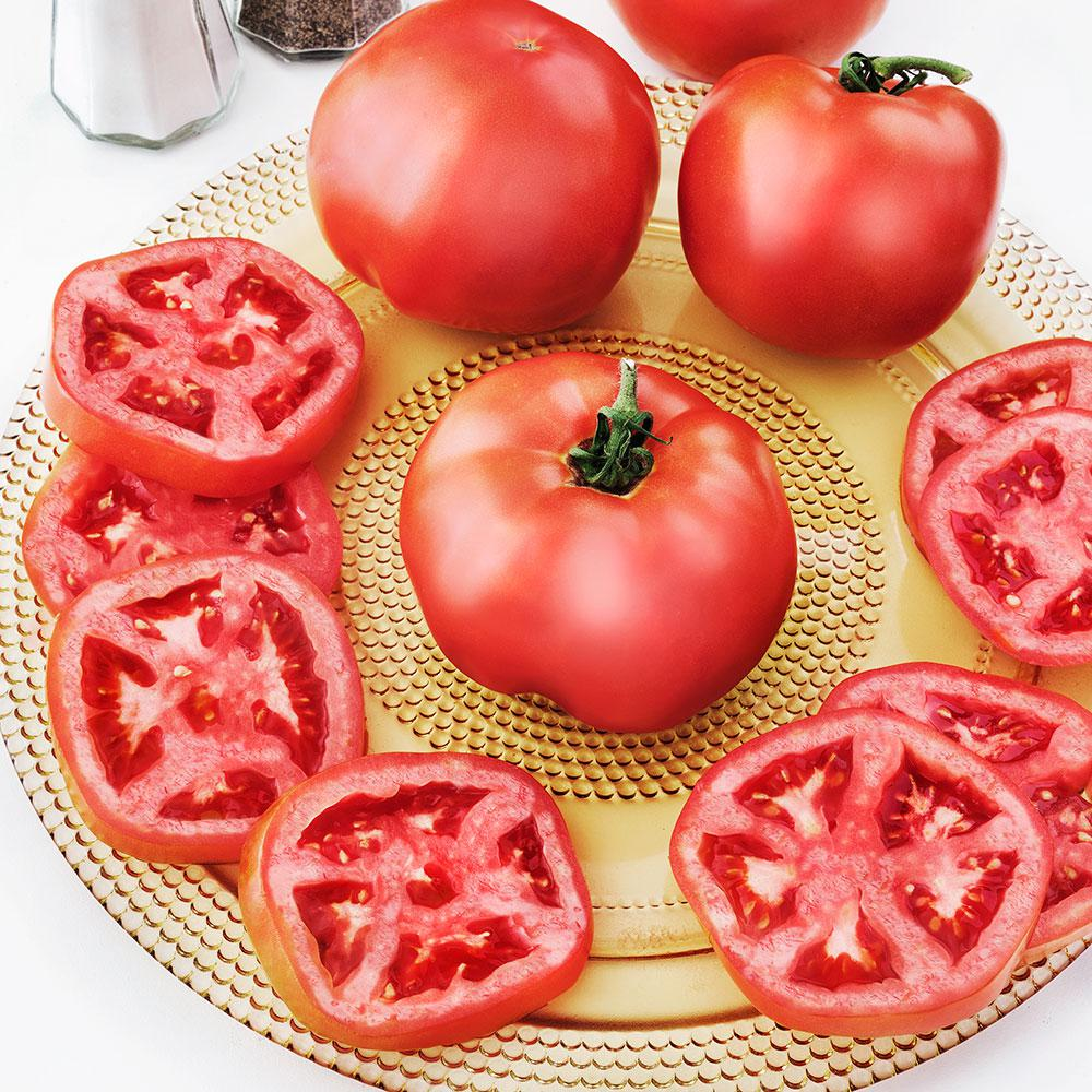 2.32 Qt. Tomato-Summer Set BHN-216
