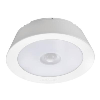 Indoor/ Outdoor 200 Lumen Battery Powered Motion Activated  LED Ceiling Light, White