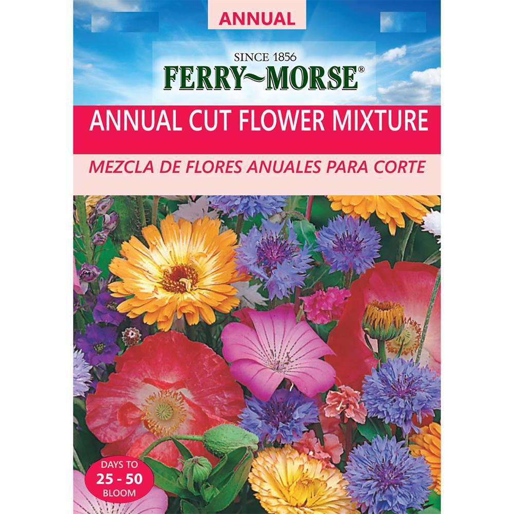 Annual Cut Flower Mixture Seed